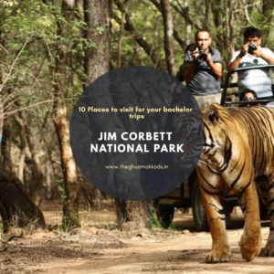 Something for the fun of wildlife with all your 'junglee toli' at Jim Corbett National Park.