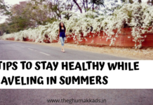 Healthy Traveling